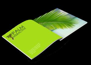 PALM-Catalog-Mockup